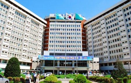 Seoul National University (Seul Milliy Universiteti, 서울대학교)